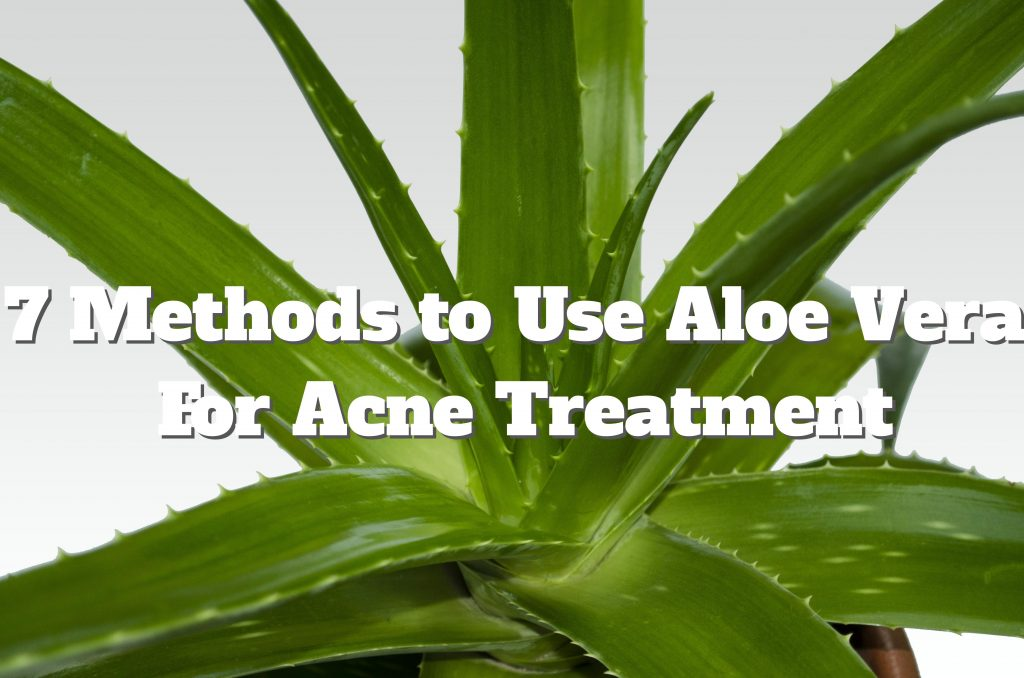aloe vera acne treatment